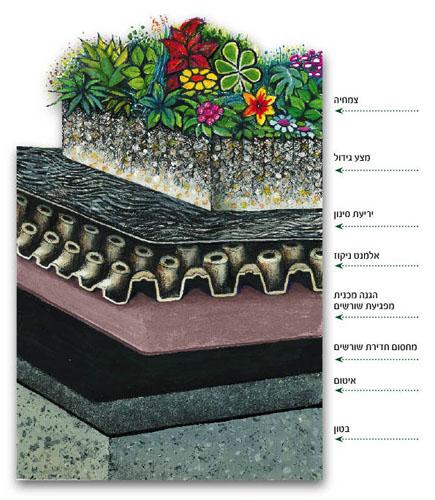 המחשת השכבות השונות של גג עם גינה